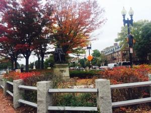 Autumn in Harvard Square