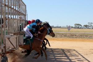 horse-racing-1239759_1280
