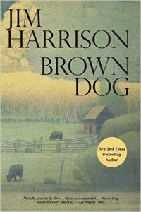 browndog
